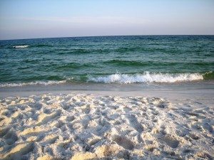 Pensacola Beach boosts ample amounts of clear water and pure white sand.  The sea shells and sand dollars are also plentiful. Photo R. Anderson