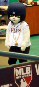 Time will tell if DJ Kitty and the Tampa Bay Rays make it back to the postseason for the for the fourth time in five years. Photo R. Anderson